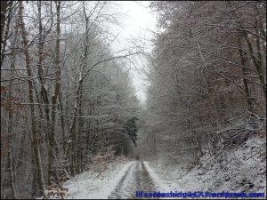 lifecoaching247_invierno11