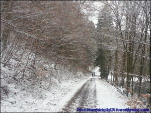 lifecoaching247_invierno12