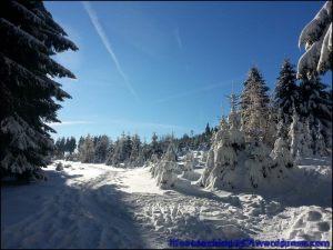 lifecoaching247_invierno15