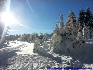 lifecoaching247_invierno16