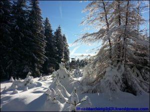 lifecoaching247_invierno19